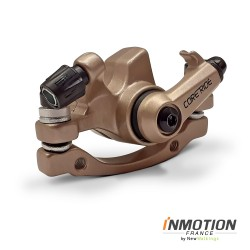 Rear disc brake shoe - P2, P2F